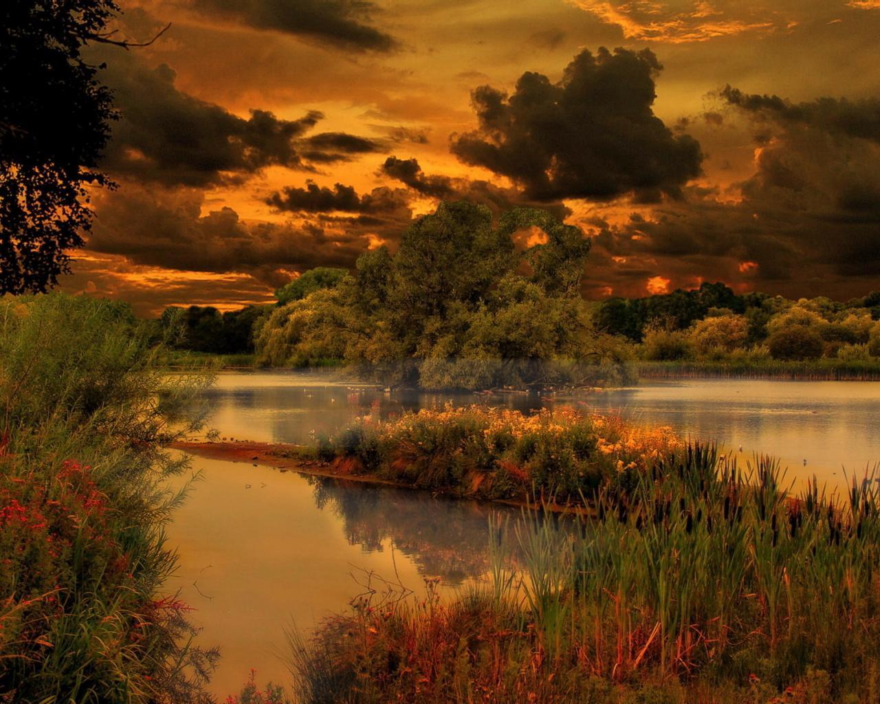 Лето природа пейзаж красота 1280x1024
