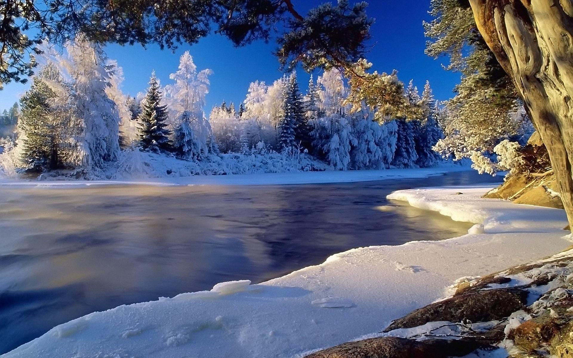 Зима река лес промезший весь обои для
