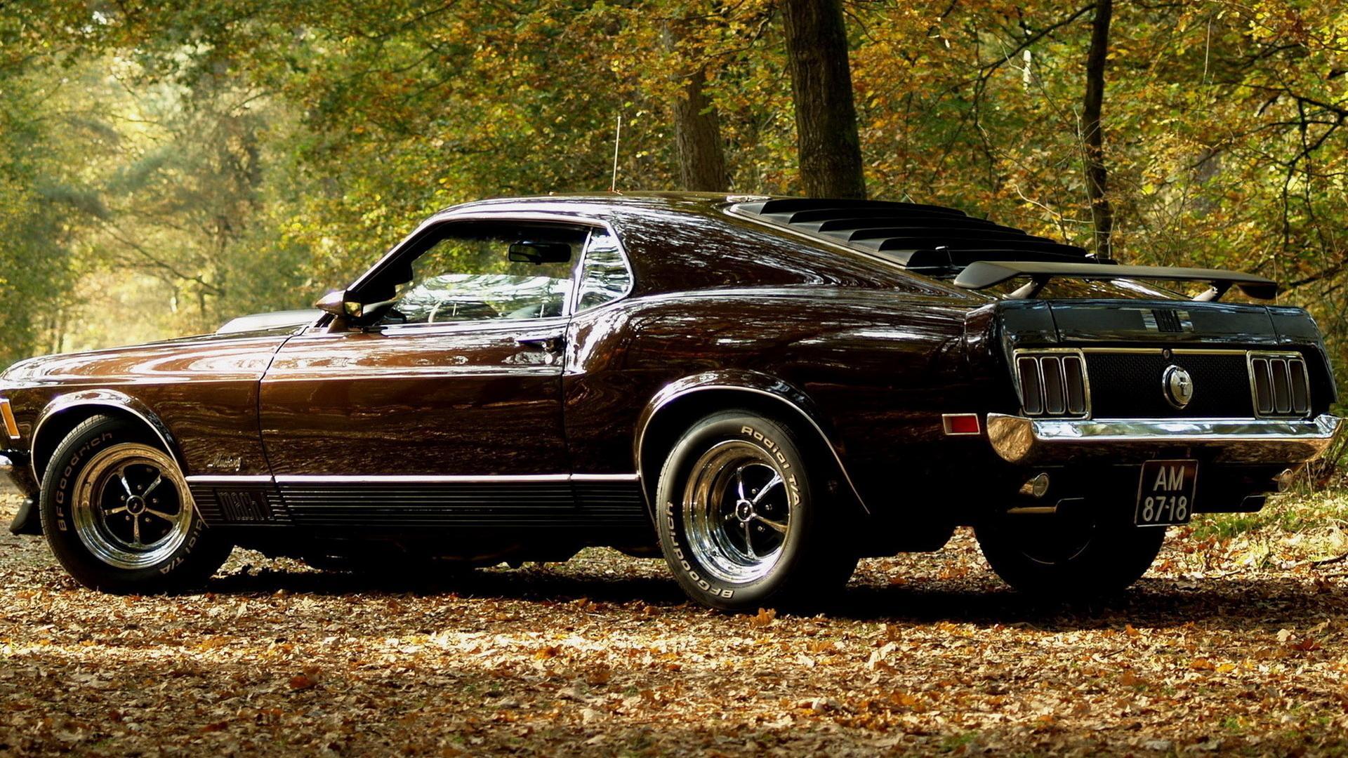 Авто машина лес ford mustang автомобили
