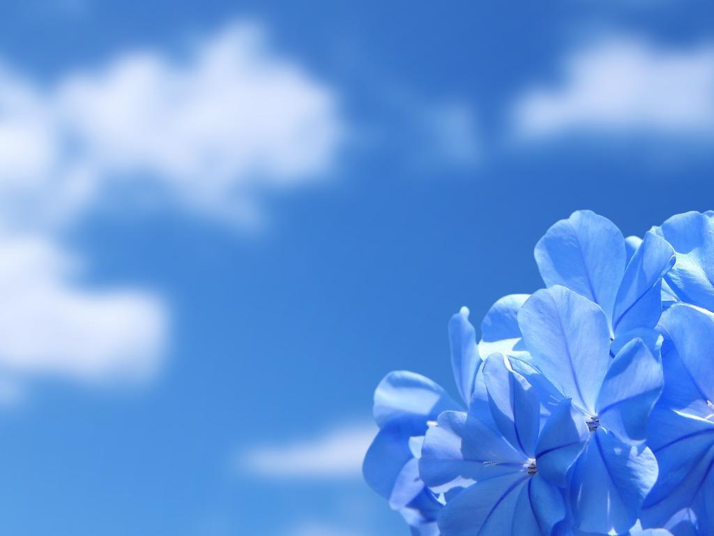Небо облака природа красота 1024x768