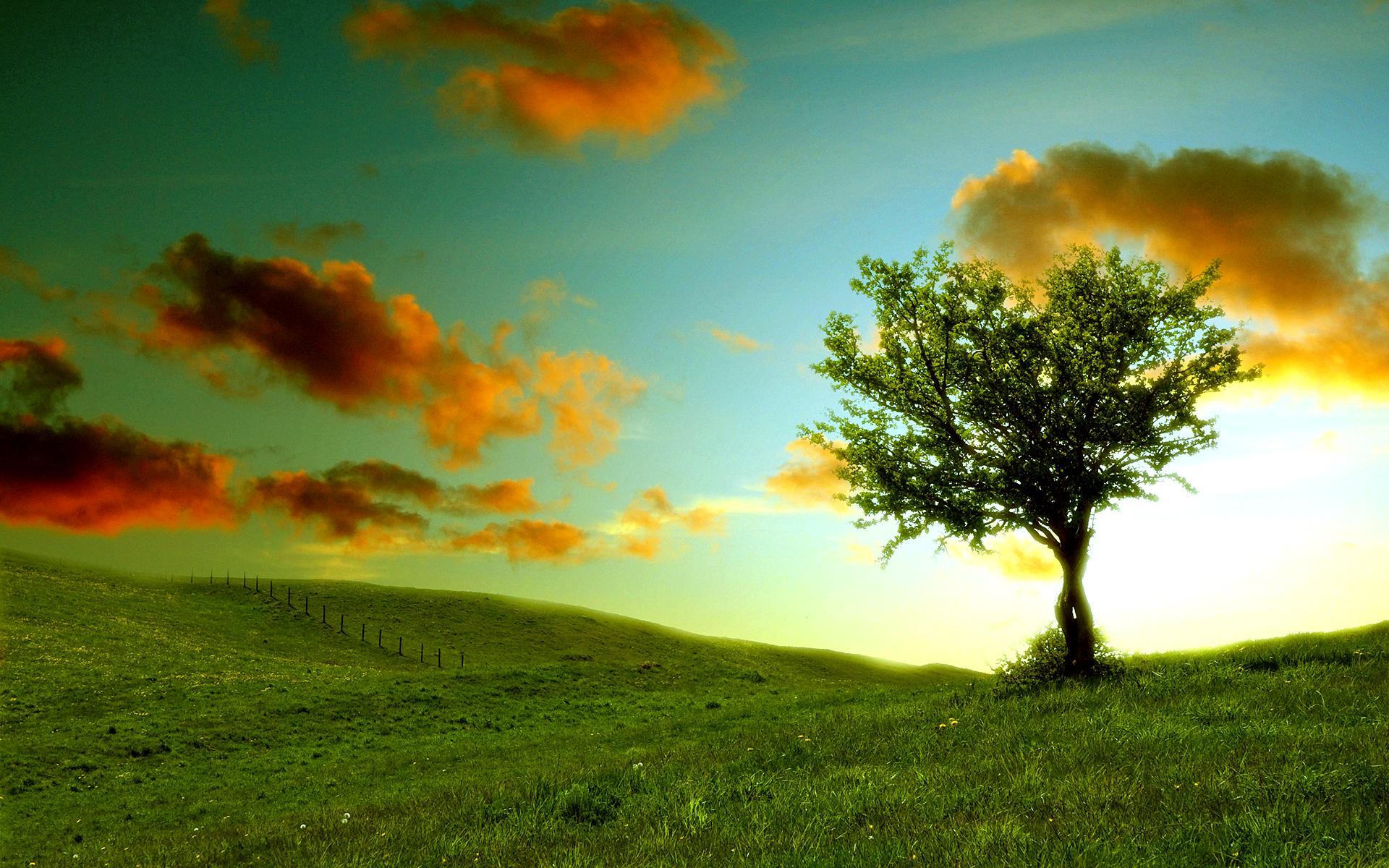 Природа природа пейзаж холмы травка