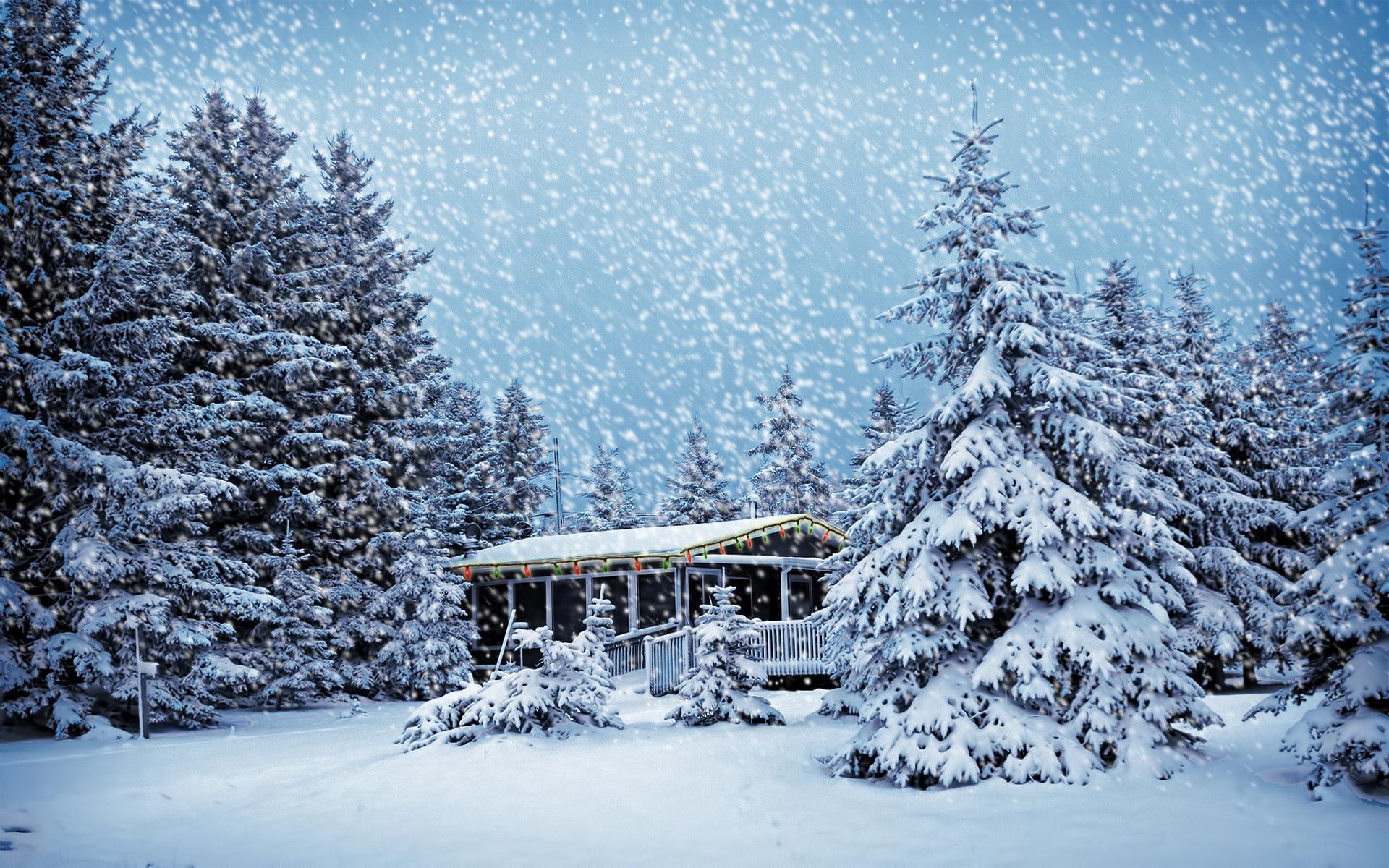 домик в зимнем лесу на рабочий стол