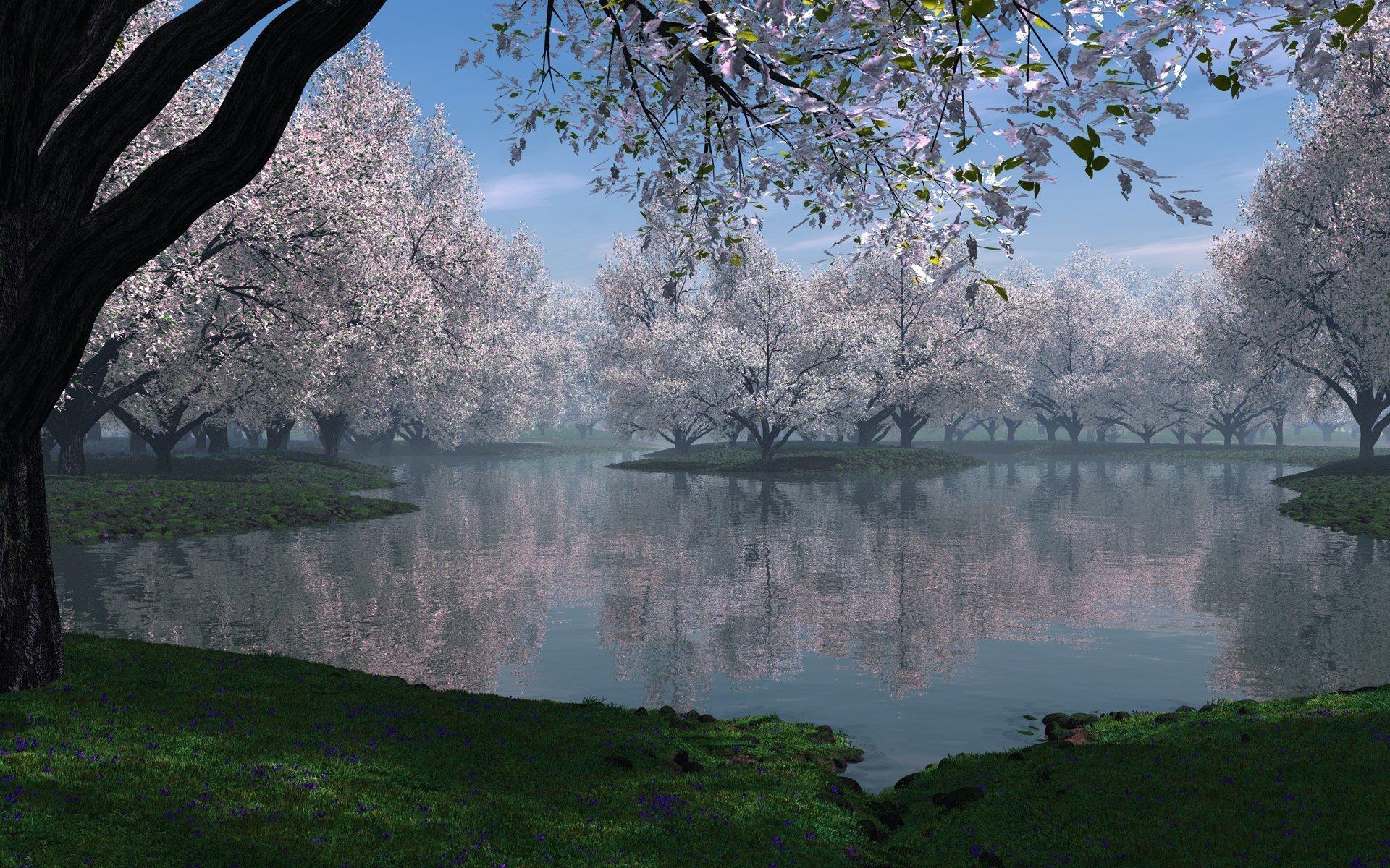 Деревья цветущие весна дымка цветы