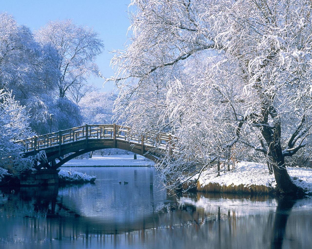 Фото на рабочий зима