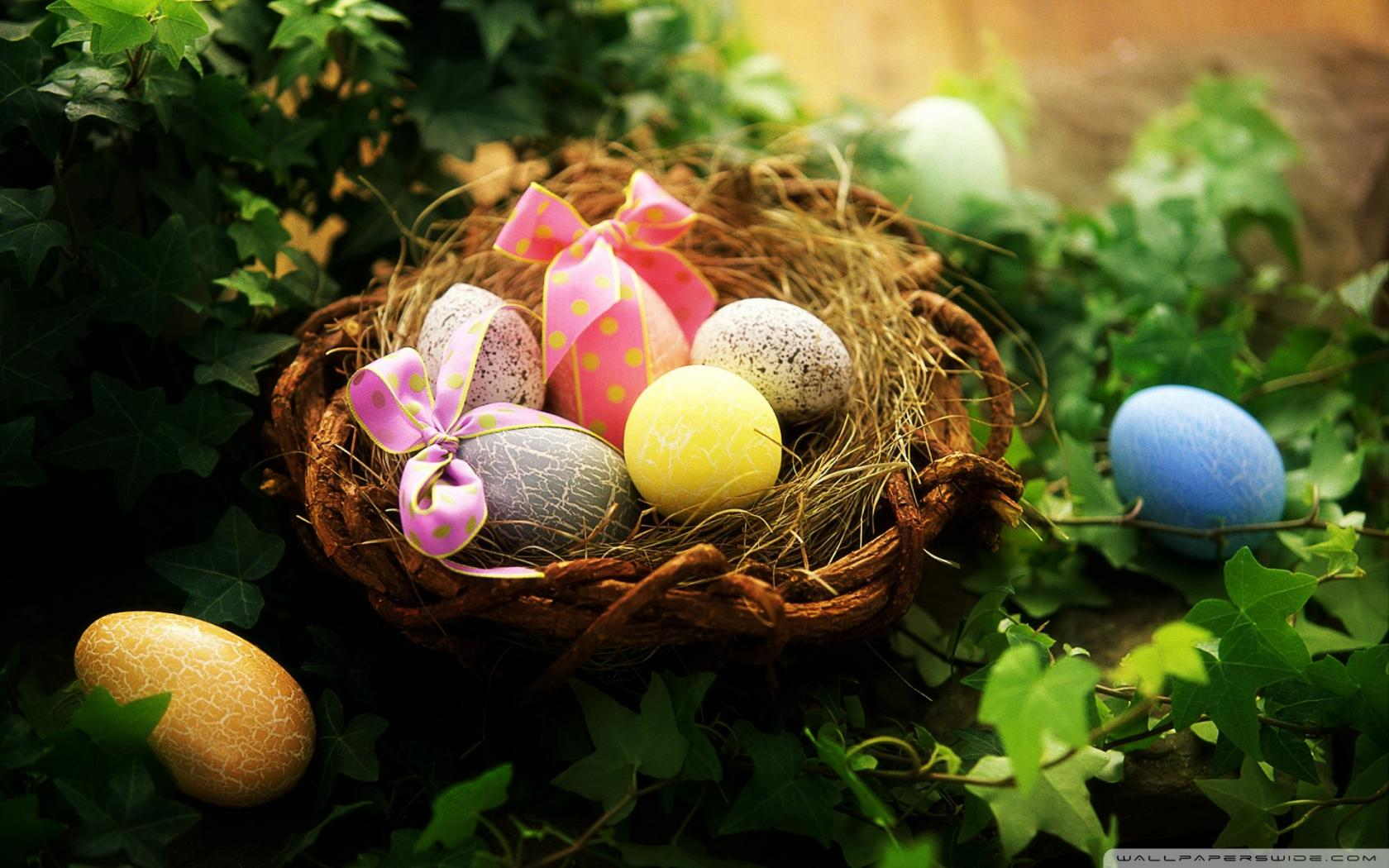 beautiful easter eggs background - photo #17