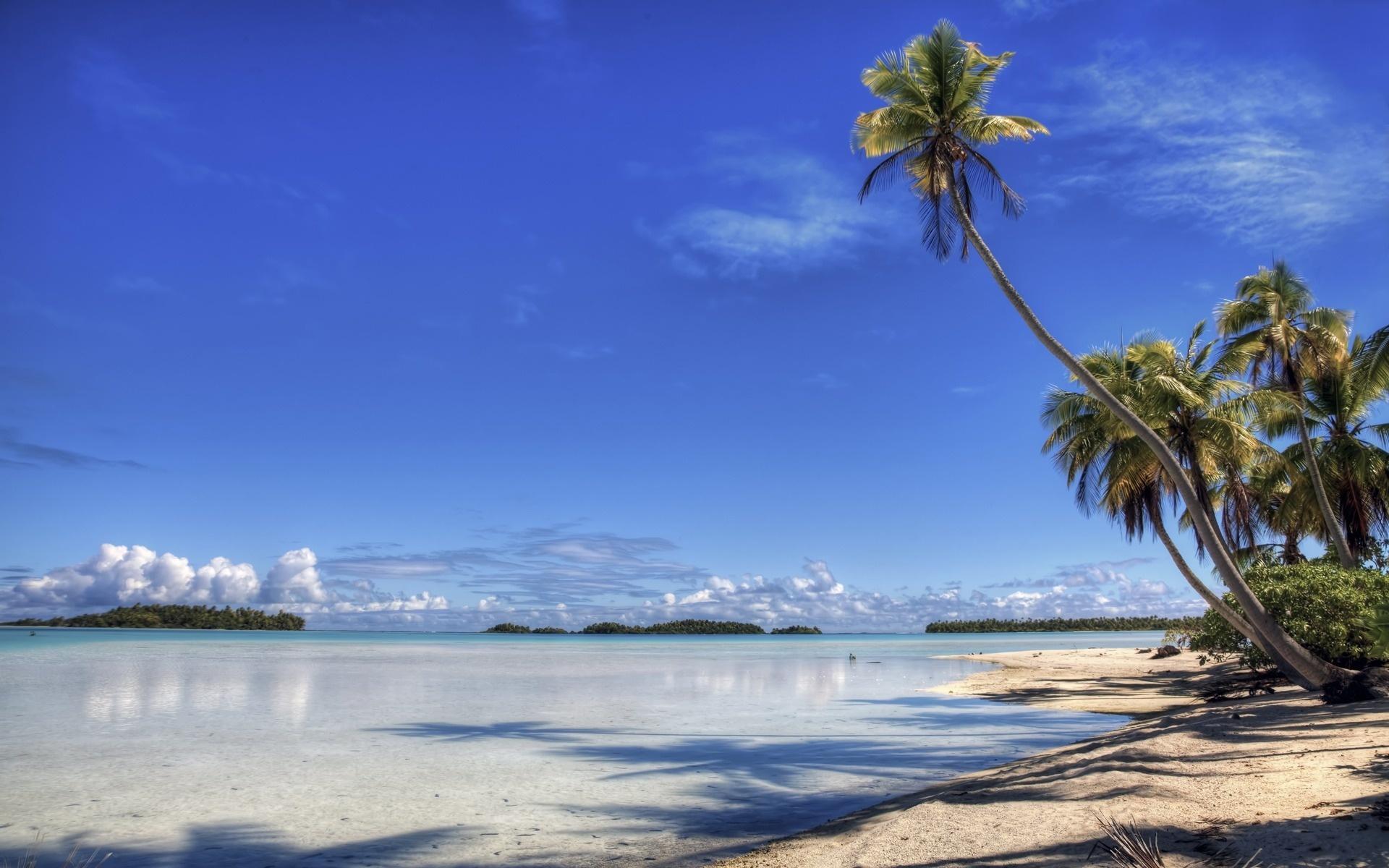 Море небо берег пальмы пляж остров