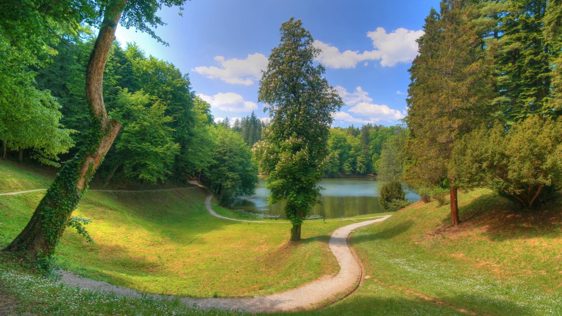 Лесная тропинка ведет к озеру природы