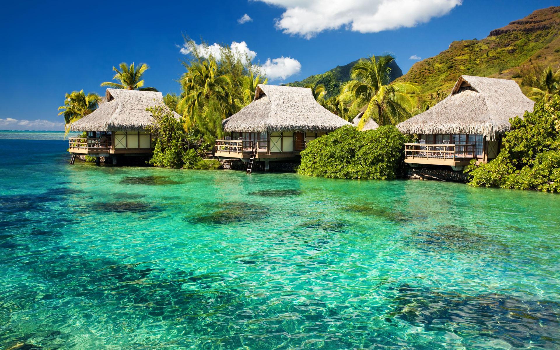 Океан лазурь бунгало остров пальмы