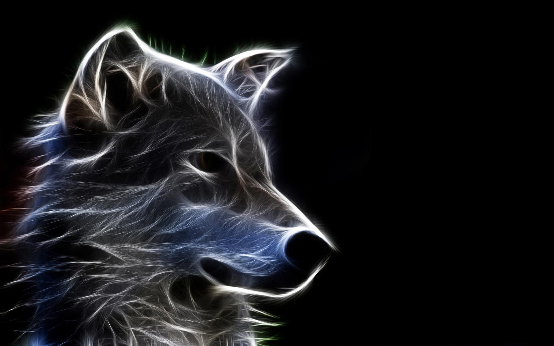 Бесплатные hd обои волки (en: wolves) фото и картинки животных на ваш рабочий стол скачать.