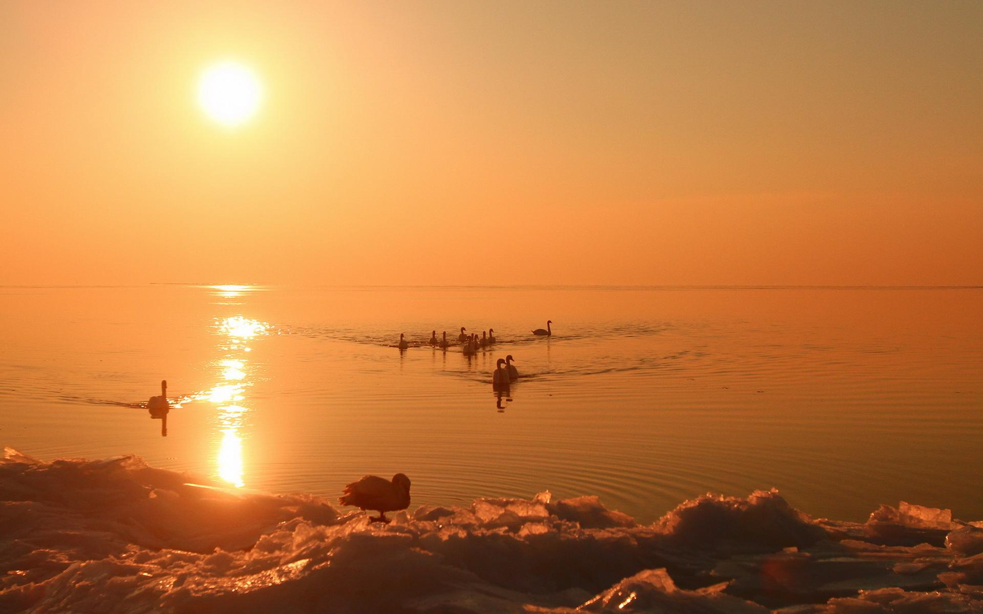 Озеро закат природа красота 1920x1200