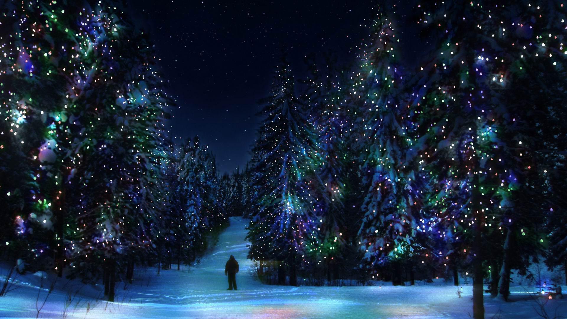 Лес елки зима новый год украшения