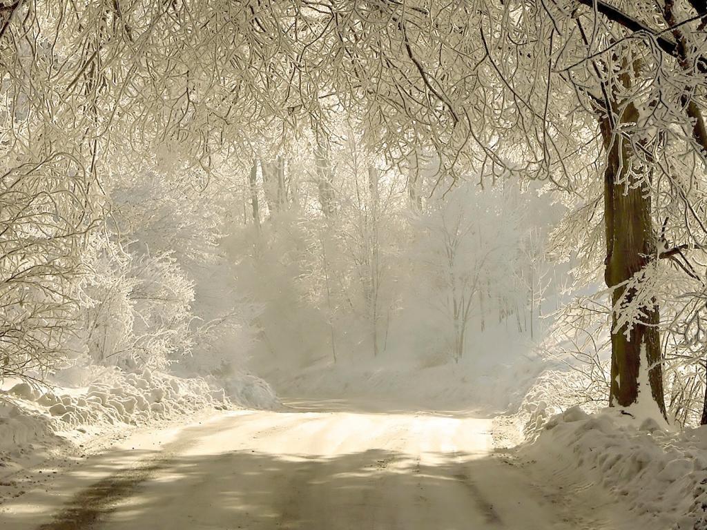 Природа зима снег праздник 1024x768