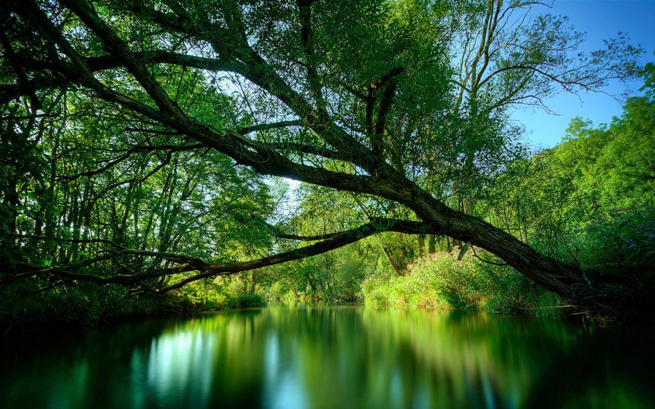 Красивые природа скачать бесплатно