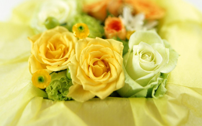 Белые и желтые розы обои для рабочего