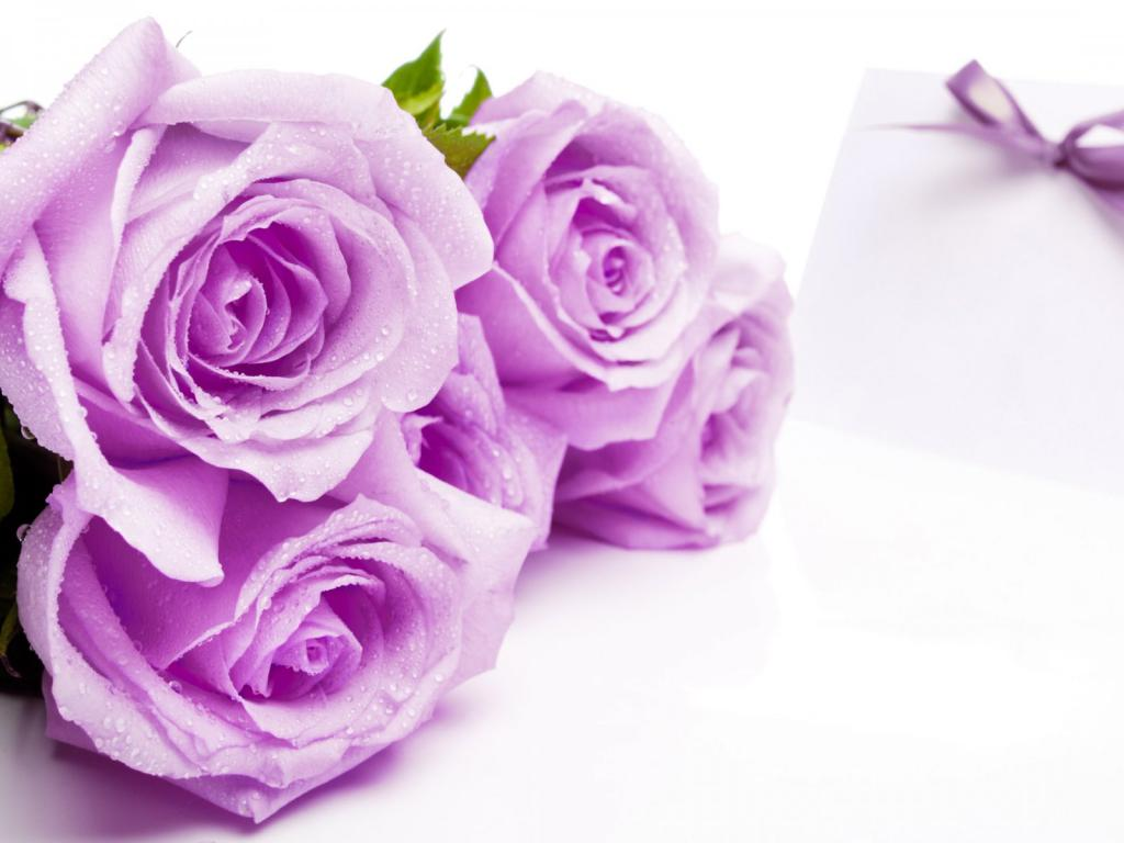 Картинки цветов для поздравления 3