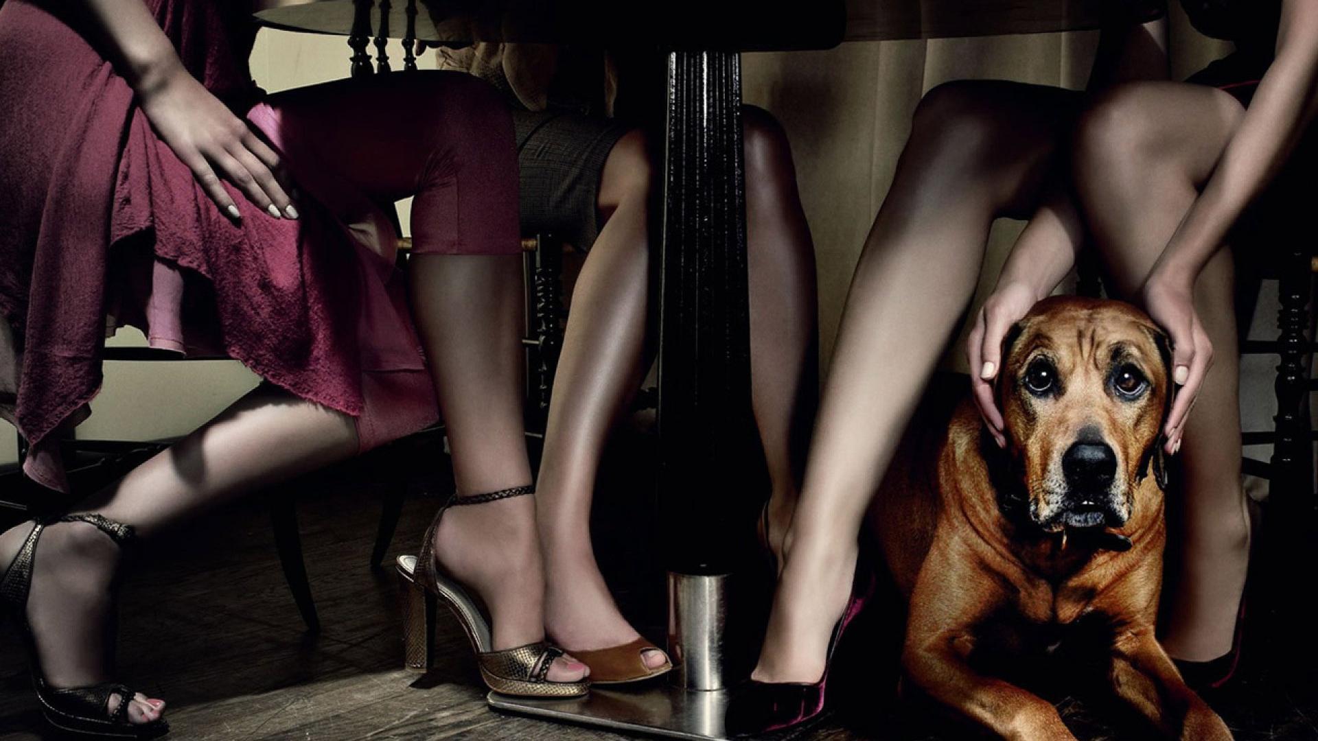 Раб ног девушки 21 фотография