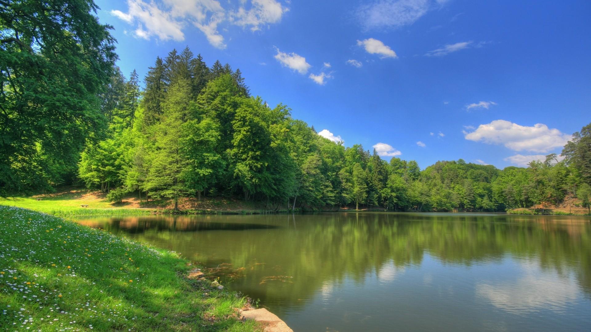Лесное озеро в россии природы обои
