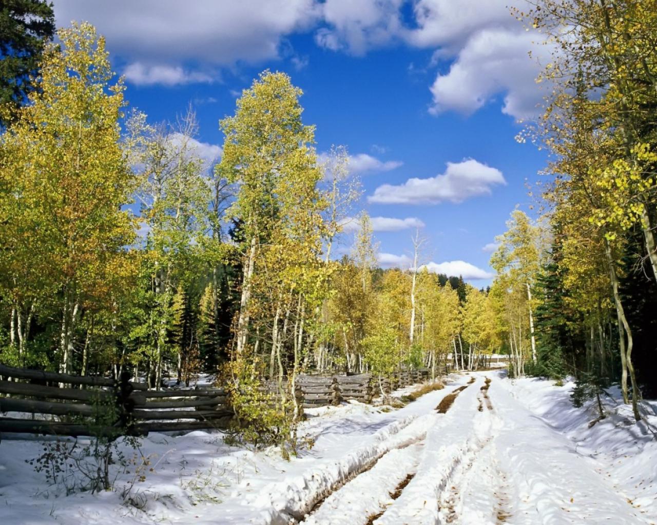 обои на рабочий стол начало зимы природа 2126