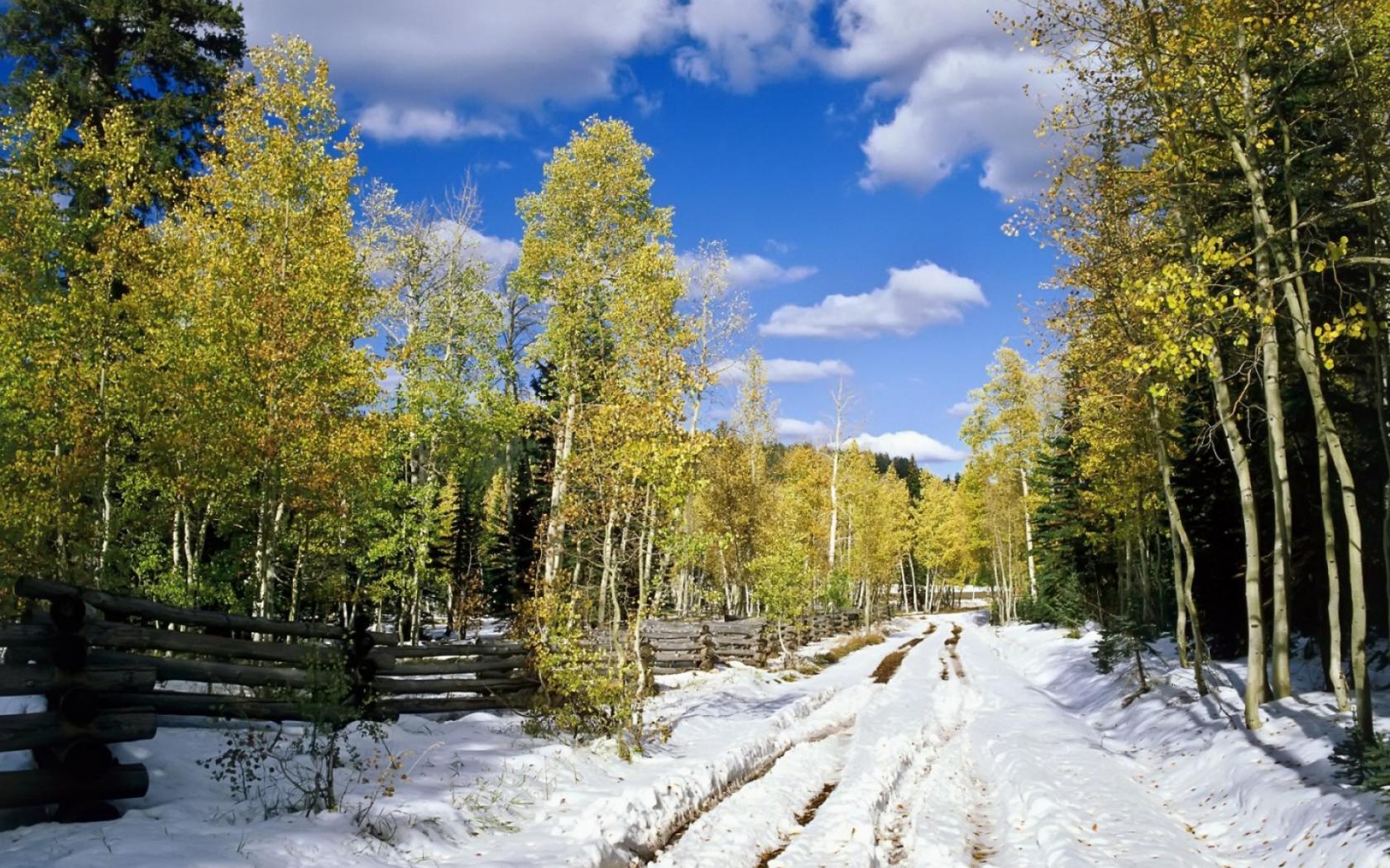 обои на рабочий стол начало зимы природа