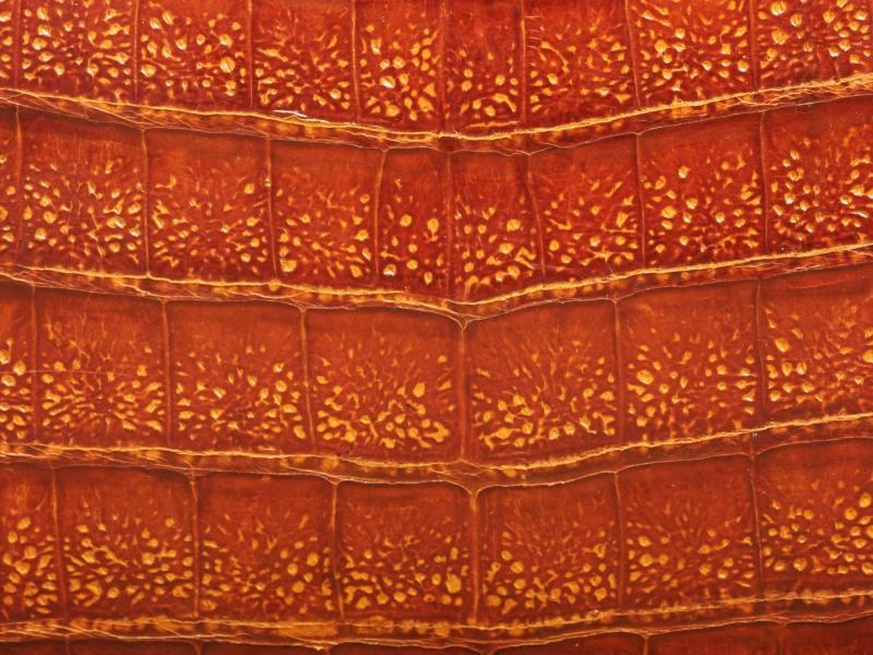 Фото, заставки, картинки на рабочий стол Текстура крокодильей кожи.