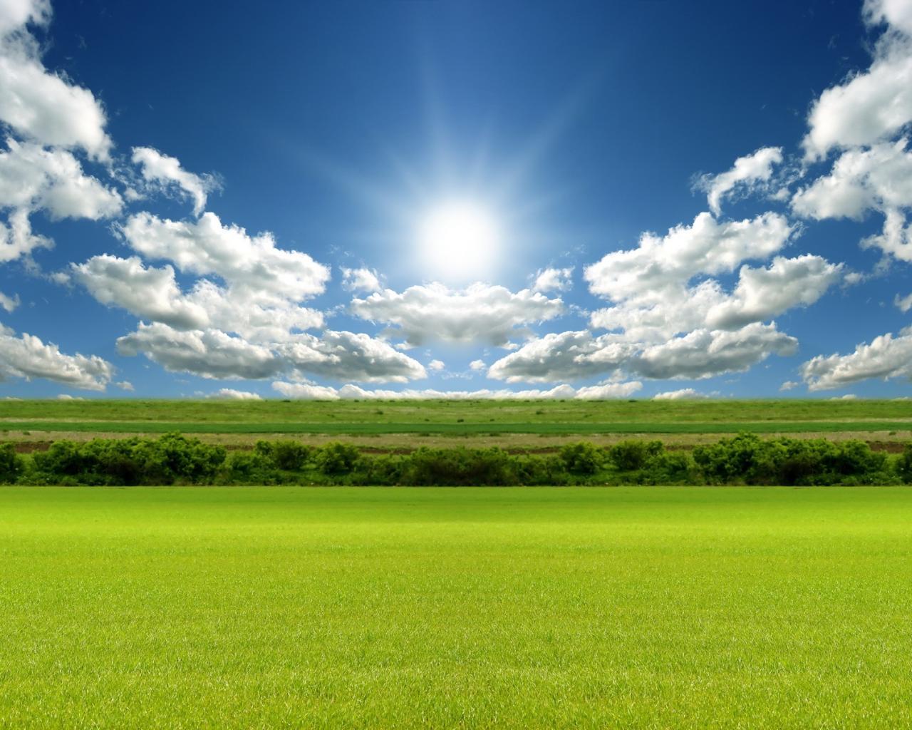 Зеленое поле под лазурным небом обои ...: hq-wallpapers.ru/wallpapers/nature/pic21228_raz1280x1024