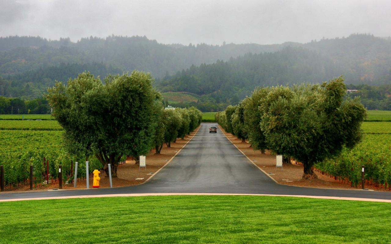 Пейзаж на городской и сельской натуре