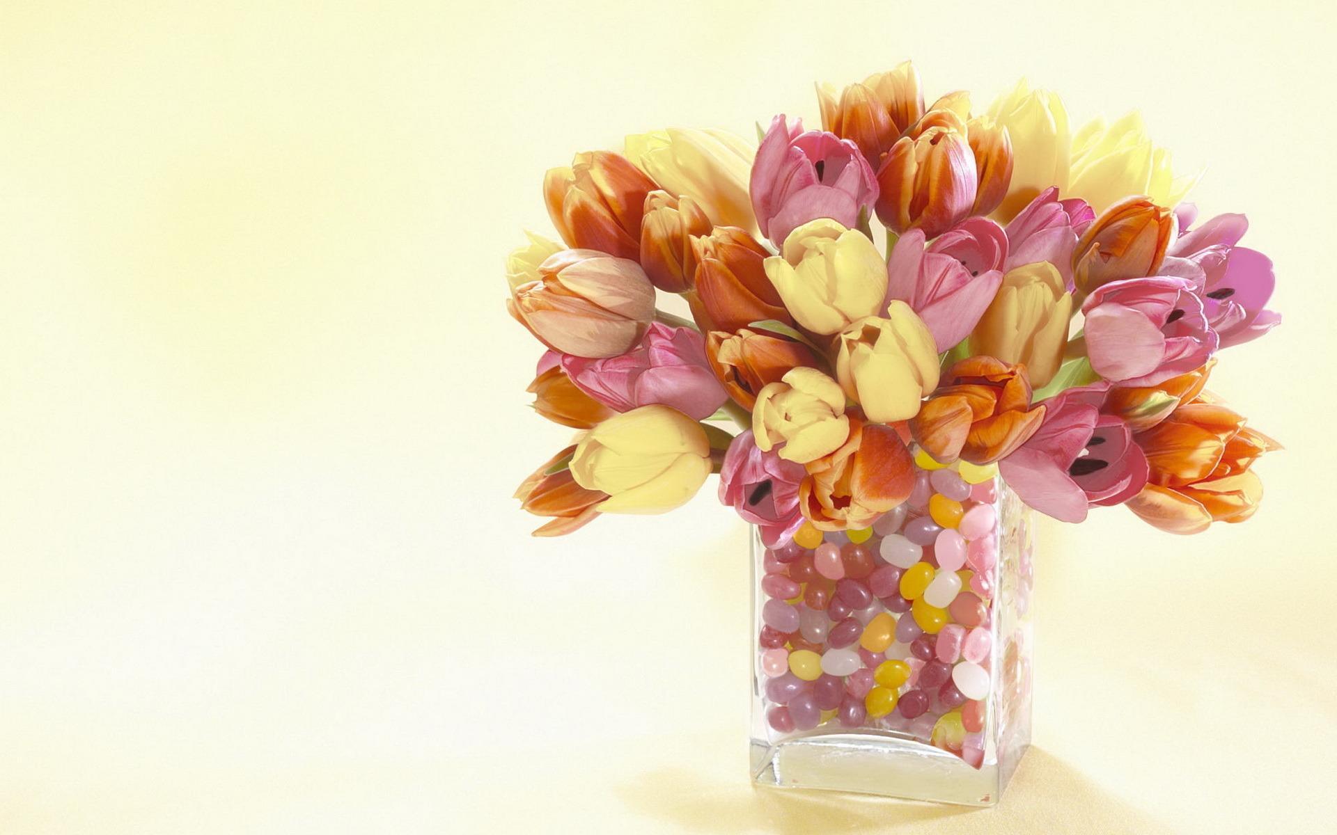 Обои на рабочий стол цветы тюльпаны