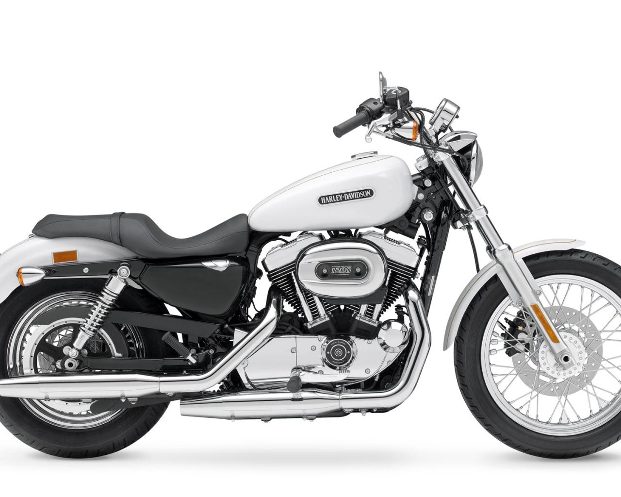 Harley-Davidson, Sportster, XL 1200 L Sportster 1200 Low, XL 1200 L Sportster 1200 Low 2008, мото, м 1280x1024