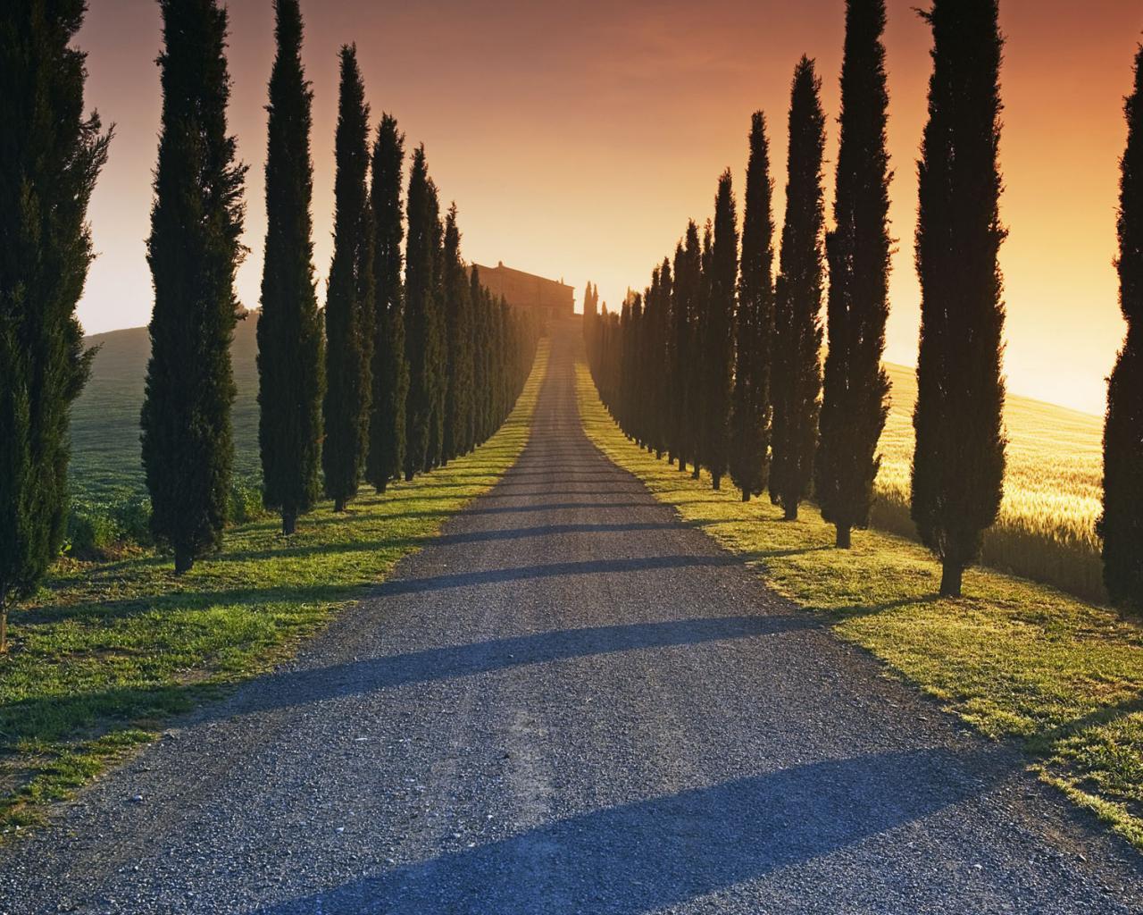 Дорога деревья закат дом обои для