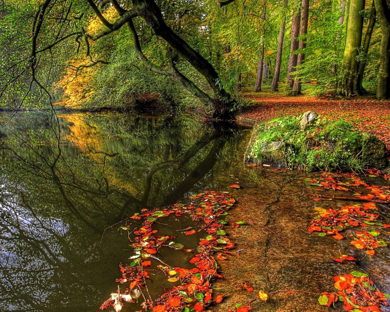 Пейзаж вид красота осень озеро обои
