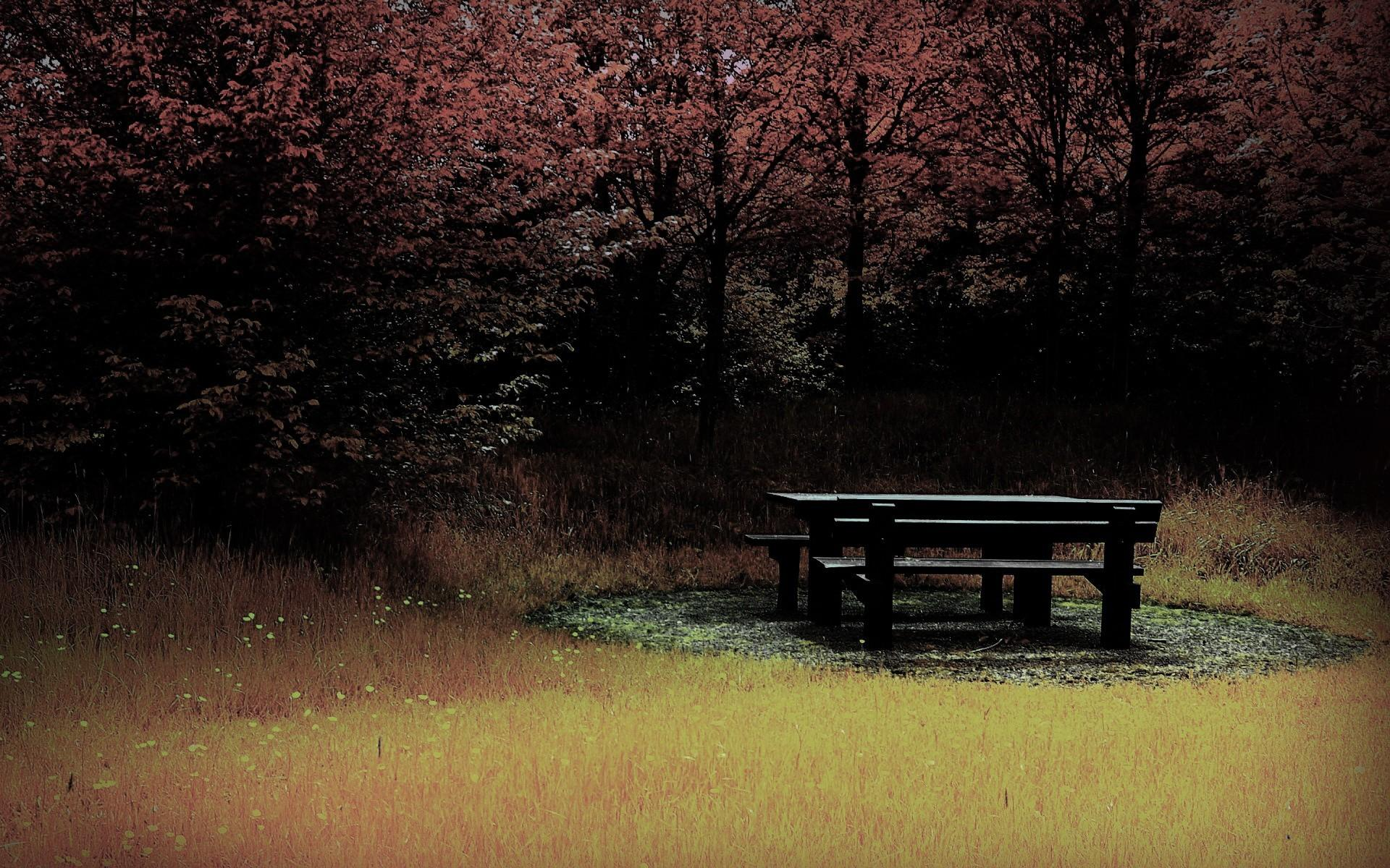 Трахается с негром в парке на столе 1 фотография