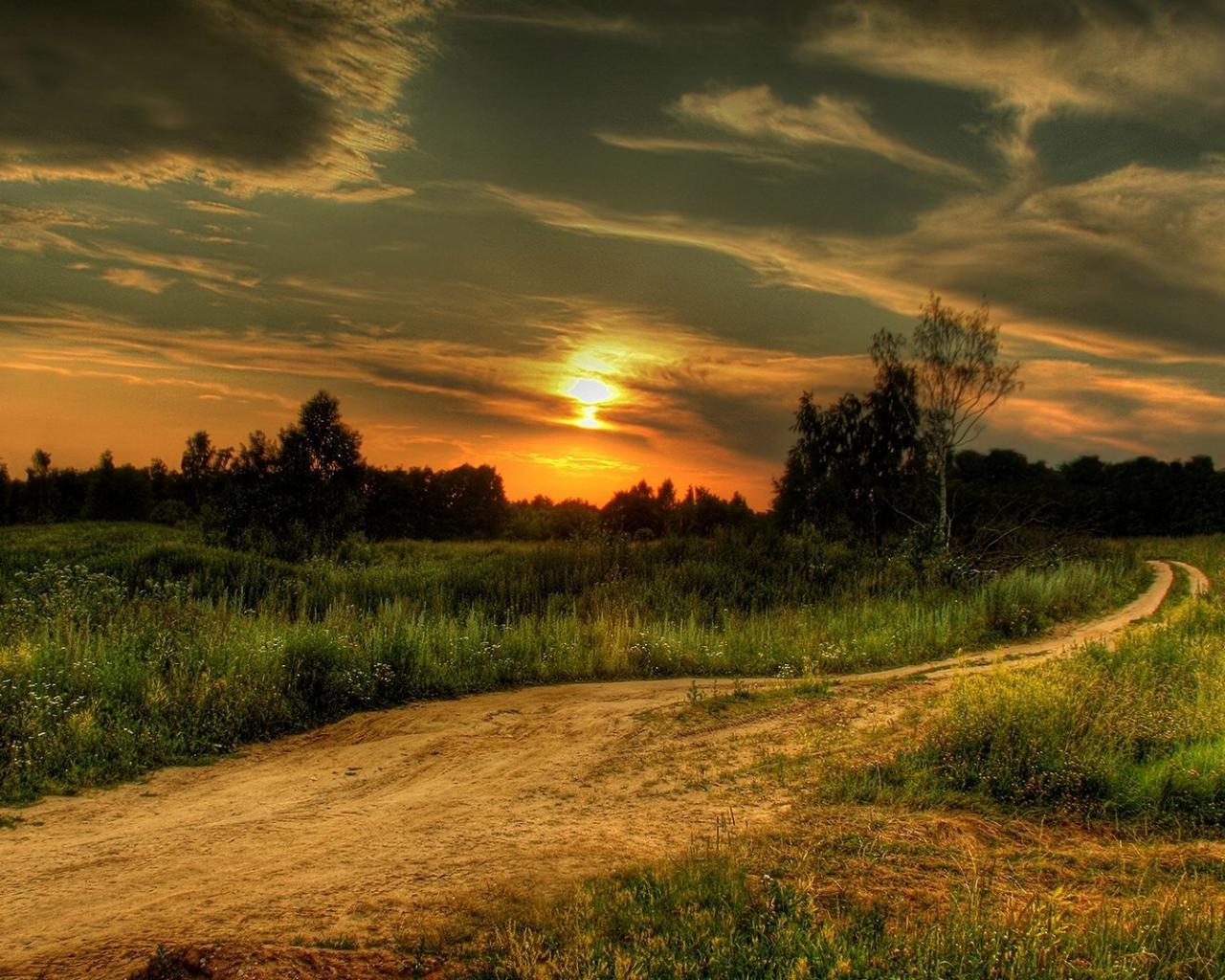 Деревья облака солнце закат обои для