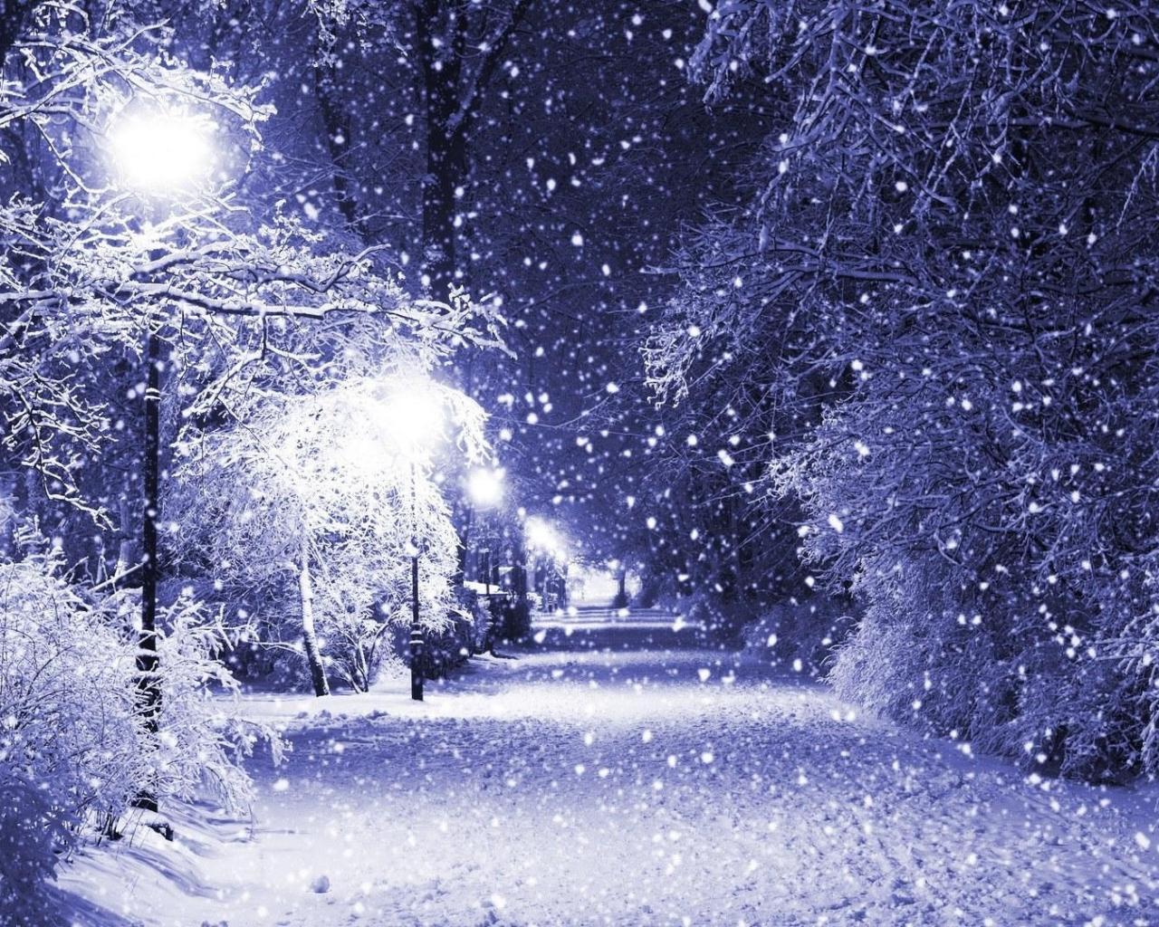 Природа природа ночь парк снег фонарь