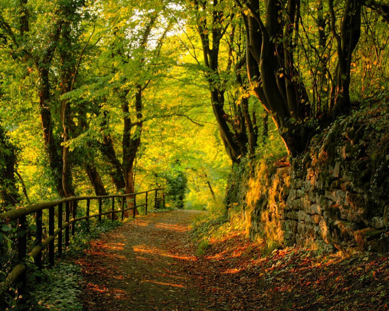 http://hq-wallpapers.ru/wallpapers/8/hq-wallpapers_ru_nature_37534_1280x1024.jpg