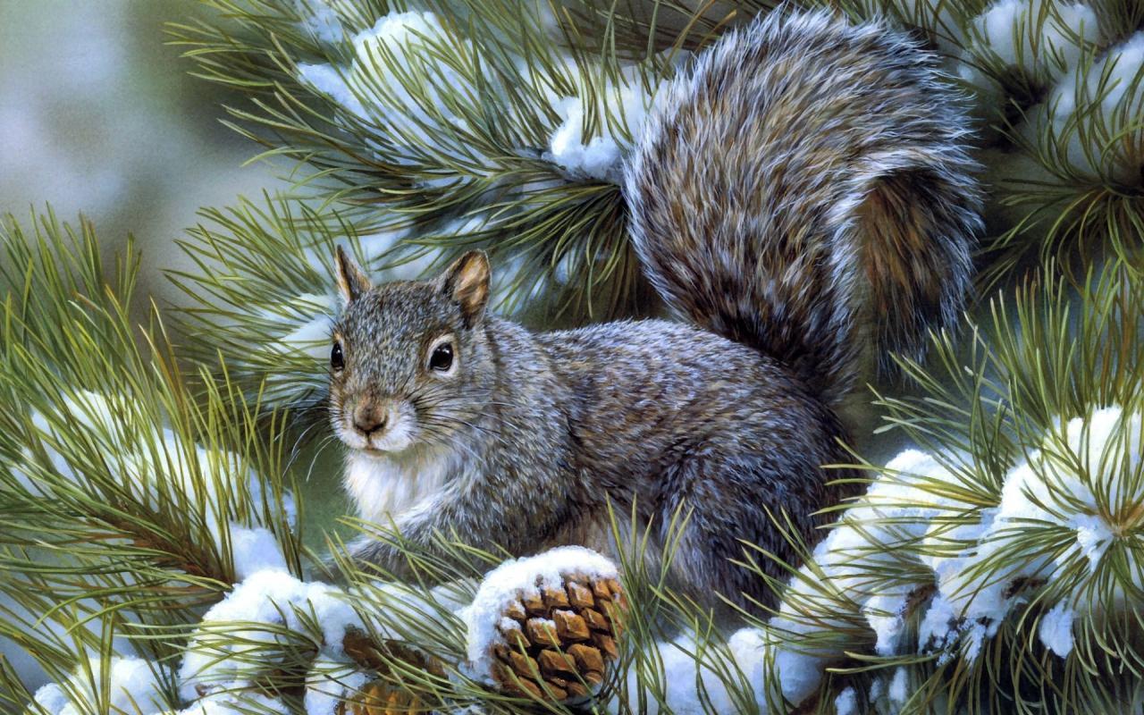 Картинки на заставку компьютера скачать бесплатно зима
