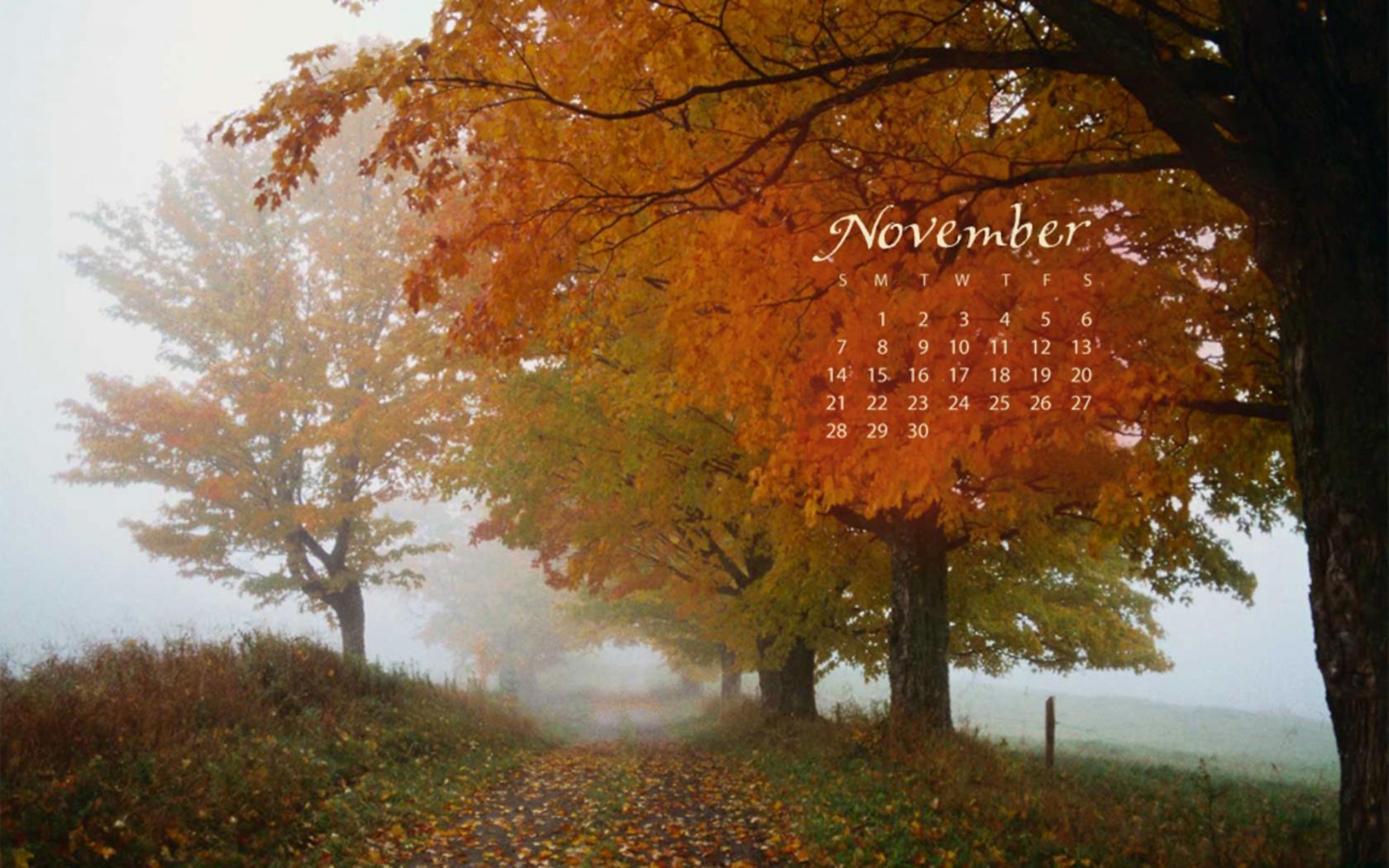 Когда сажать редис в 2016 году по лунному календарю