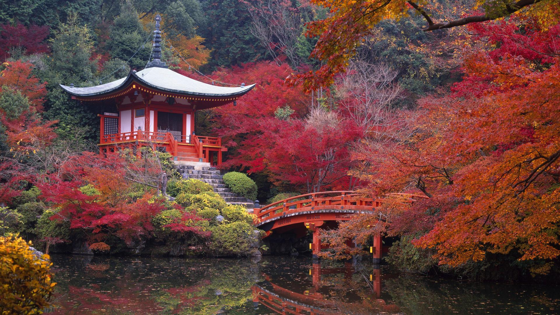Дайго киото япония обои для рабочего